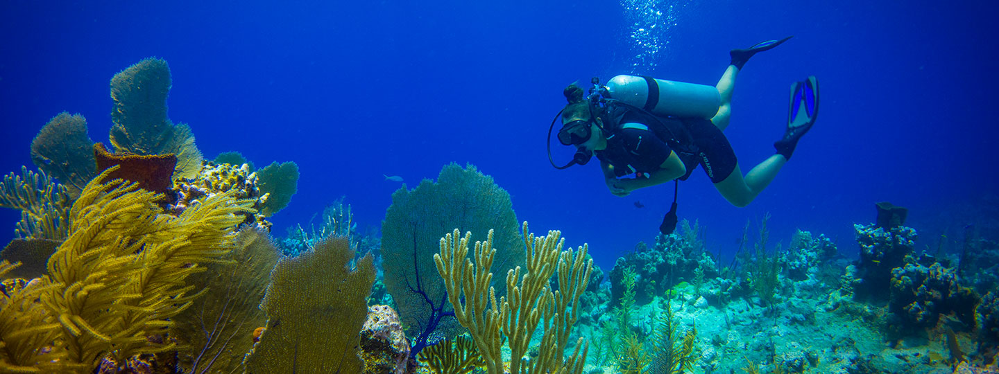 Scuba Diving At East Bay Resort South Caicos, Turks And Caicos