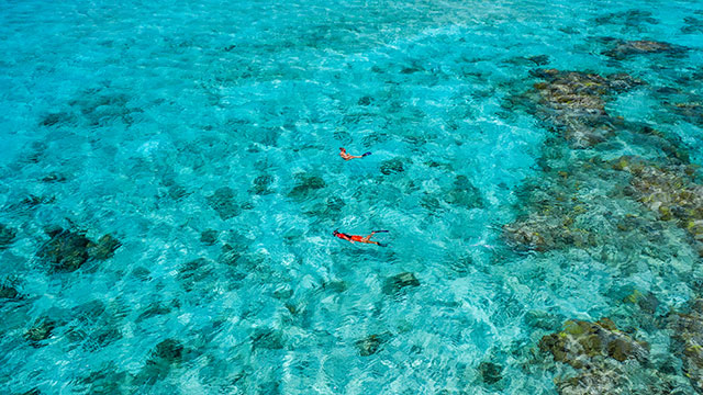 Snorkeling Excursions At East Bay Resort South Caicos, Turks And Caicos