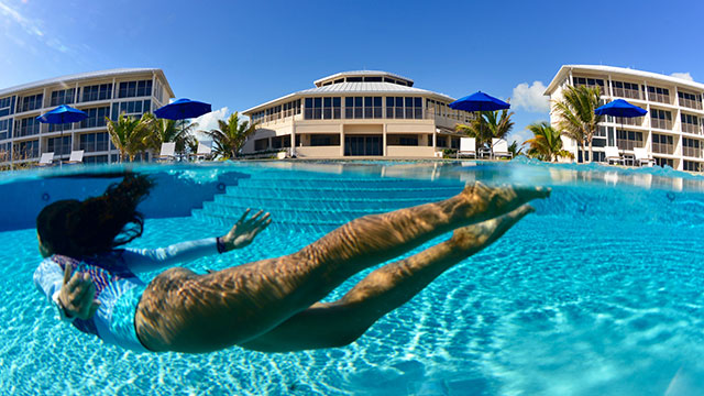 Diving Into The Pool At East Bay Resort Pool South Caicos, Turks And Caicos