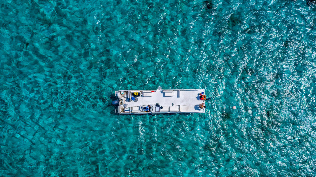 Snorkeling Excursions At East Bay Resort South Caicos