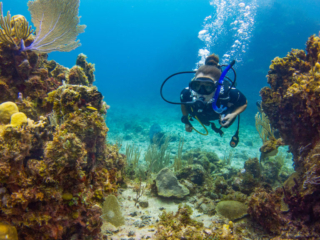 Scuba Diving At East Bay Resort