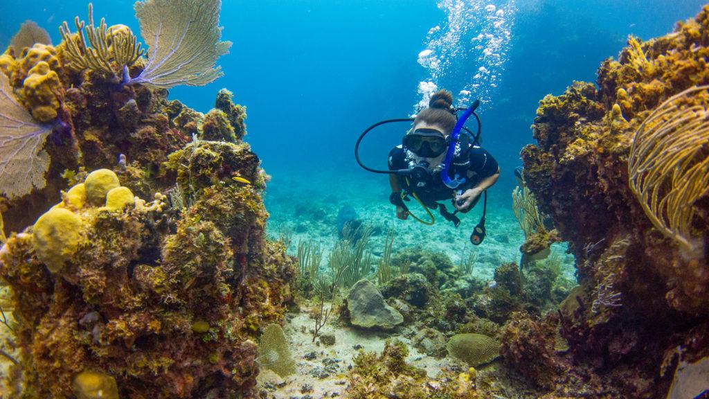 Scuba Diving At East Bay Resort