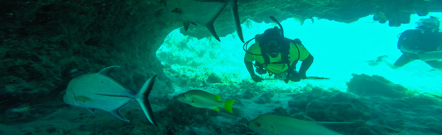 Scuba Diving In South Caicos At East Bay Resort