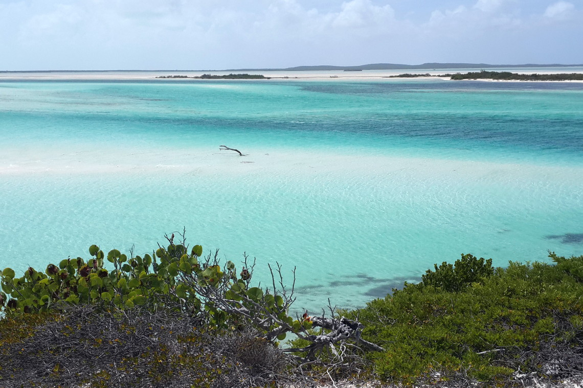 North Shore and East Caicos in the Background