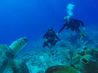 Scuba Diving on South Caicos Island at East Bay Resort